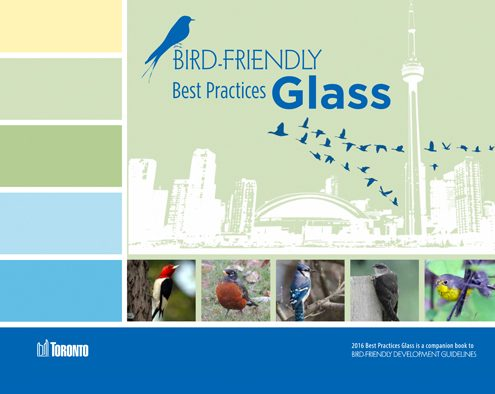 Bird-Friendly Practices - Toronto